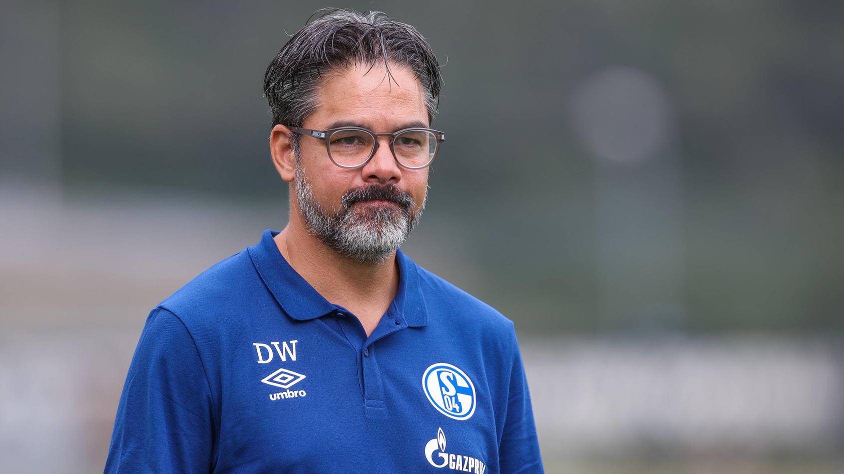 28.08.2020, Fussball, Saison 2020/2021, Testspiel, FC Schalke 04 - Aris Saloniki, Cheftrainer David Wagner (FC Schalke