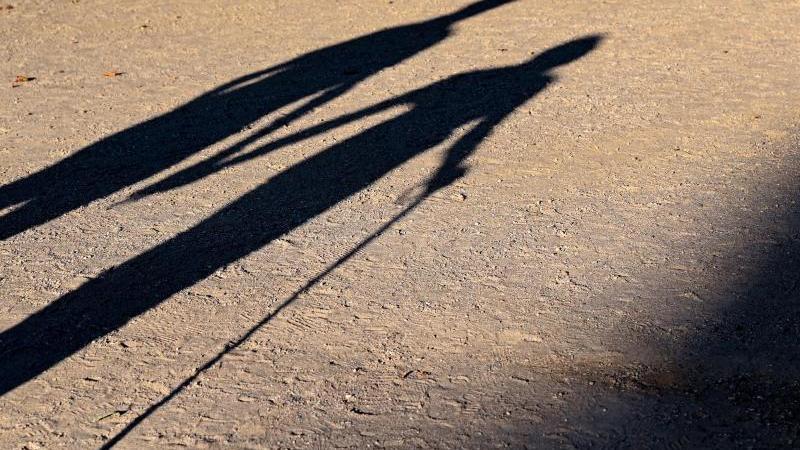 Zwei ältere Personen gehen Hand in Hand mit einem Gehstock über einen Weg und werfen einen langen Schatten. Foto: Patrick Pleul/dpa/Archivbild