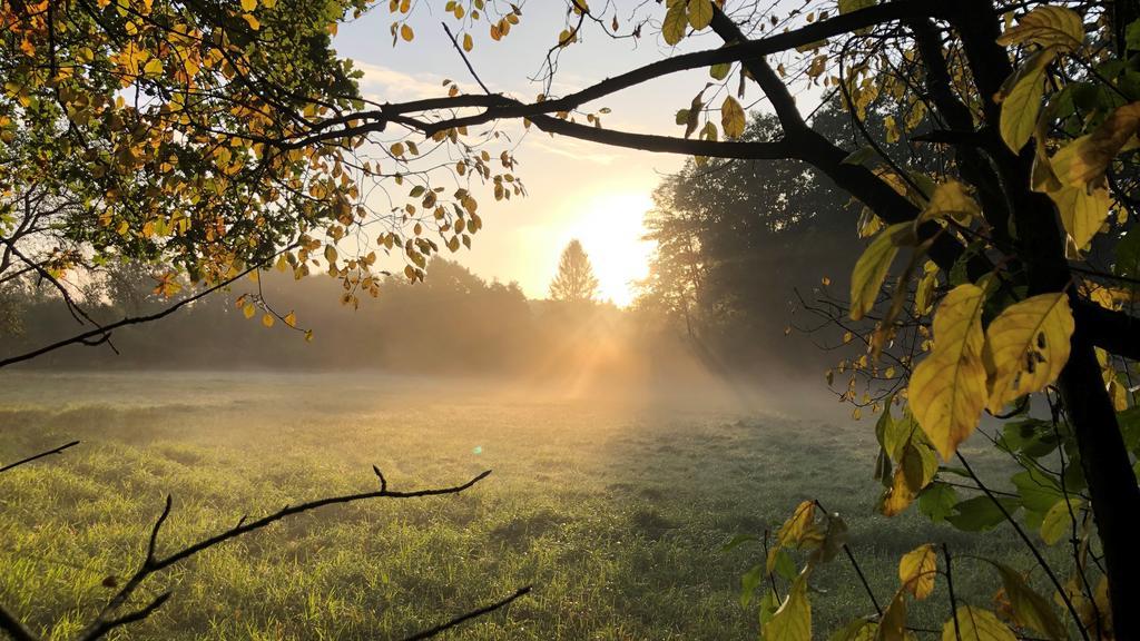 Naturschutzgebiet Heidkoppelmoor