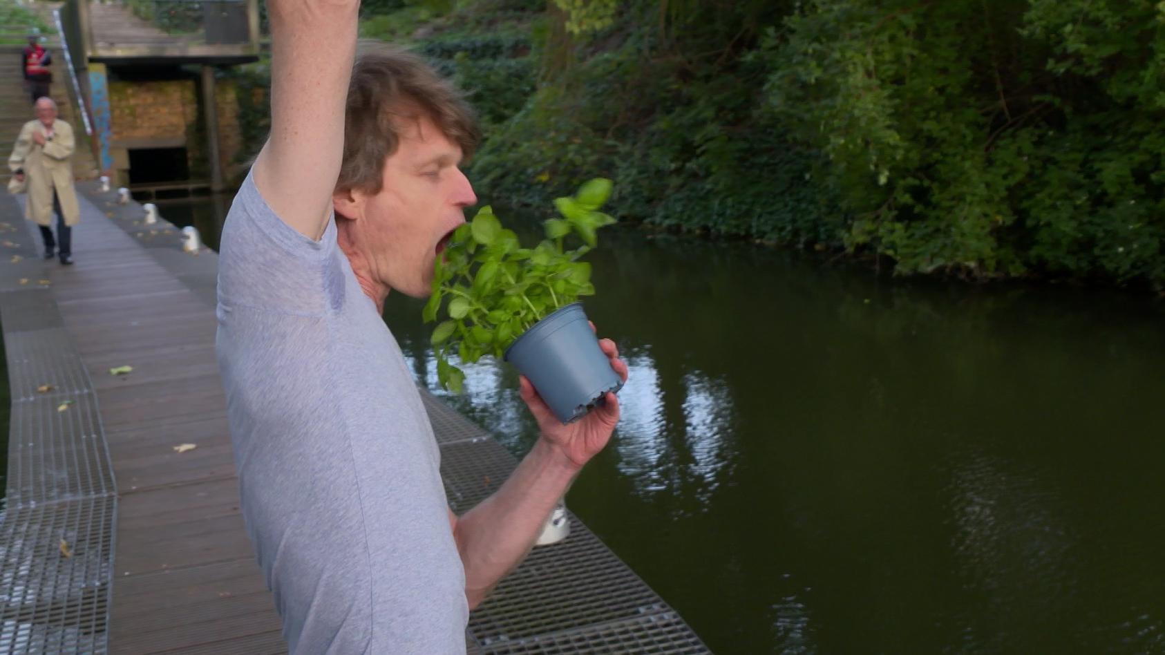 Bremer Altersforscher Sven Voelpel isst Basilikum während er an einem Baum hängt