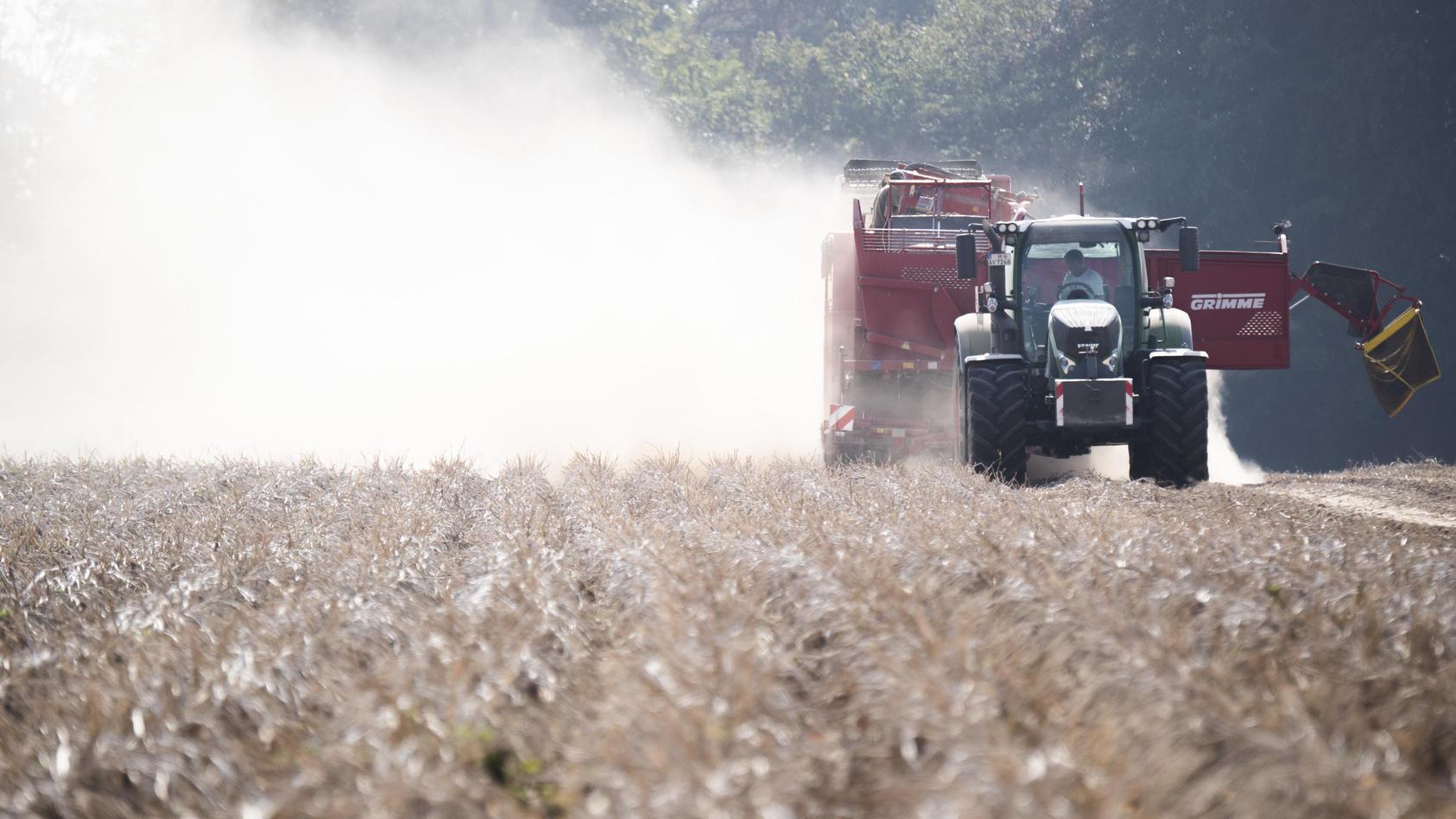 Trockenheit bereitet Landwirtschaft Probleme