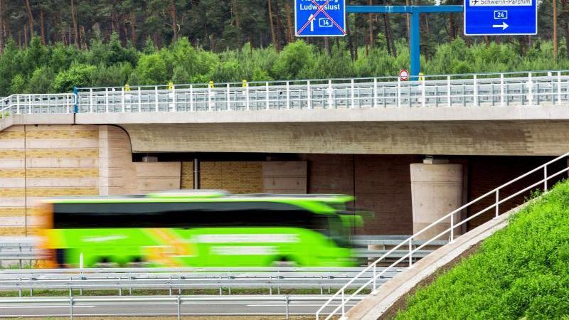 Unterwegs mit einem Fernbus in Mecklenburg-Vorpommern: Fahrgäste haben hier klar festgelegte Rechte. Foto: Jens Büttner/dpa/dpa-tmn