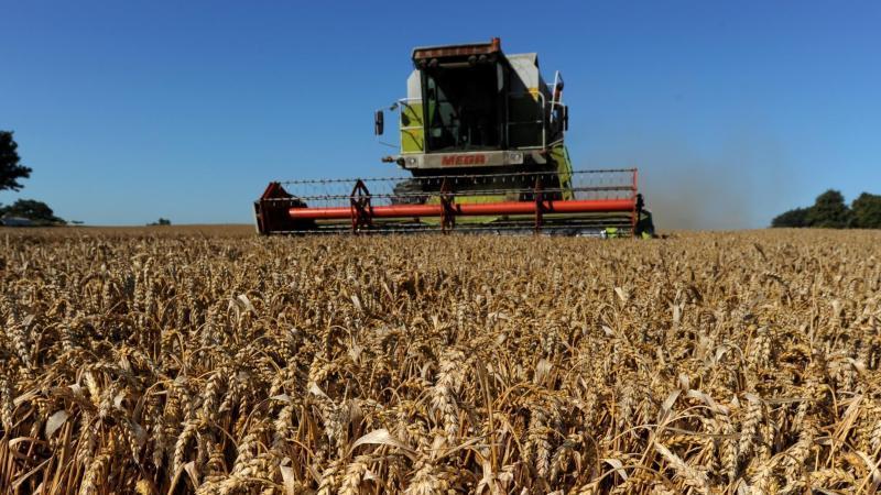 Vor allem bei den Umweltvorgaben der Agrarreform gibt es Differenzen. Foto: Carsten Rehder/dpa