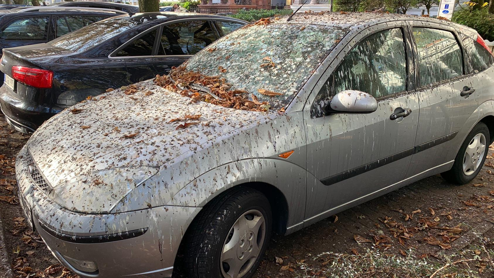 Mit Vogelkot bedecktes Auto in Wiesbaden