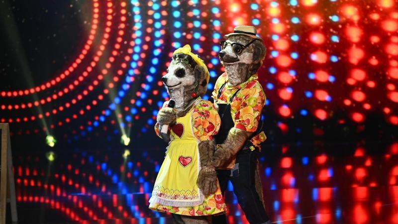"""Zum Start der neuen Staffel von """"The Masked Singer"""" singt """"Familie Erdmann"""" gemeinsam auf der Bühne. Foto: Willi Weber/ProSieben/dpa"""