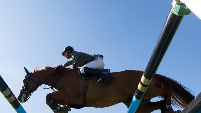 Ein Reiter und sein Pferd springen über ein Hindernis. Foto: picture alliance/dpa/Symbolbild