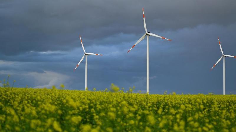Der Himmel über einem Windpark in Brandenburg ist dicht bewölkt. Foto: Patrick Pleul/dpa-Zentralbild/dpa