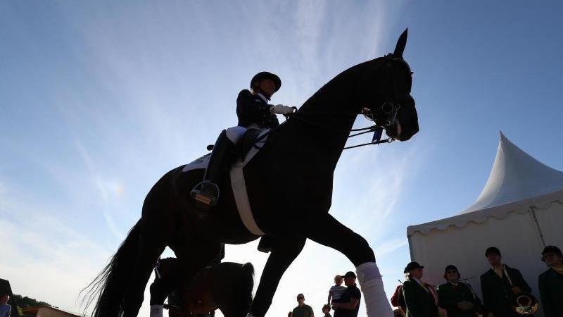 Eine Dressurreiterin und ihr Pferd in Aktion. Foto: Friso Gentsch/dpa/Symbolbild