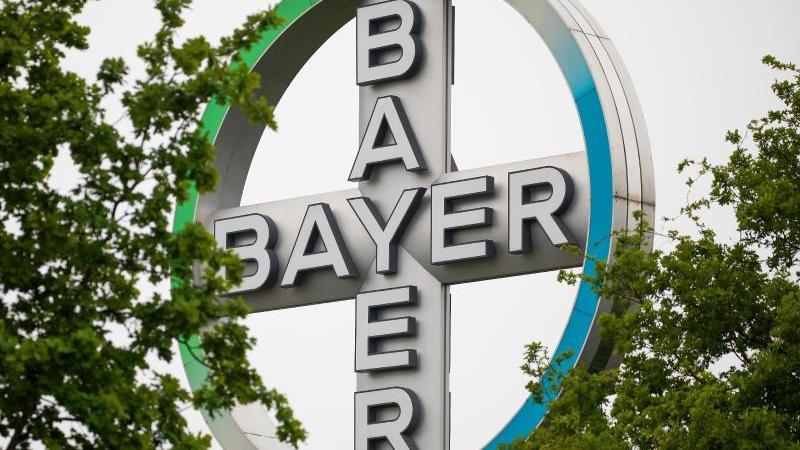 Das Bayer Kreuz, Logo des Unternehmens Bayer, steht zwischen Bäumen. Foto: Oliver Berg/dpa/Archivbild