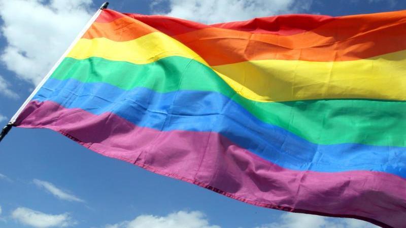 Blick auf eine Regenbogenfahne. Foto: Wolfgang Kumm/dpa/Symbolbild