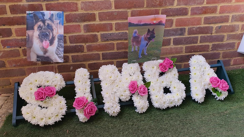 Eine Blumenhommage an den verstorbenen Hund Simba.