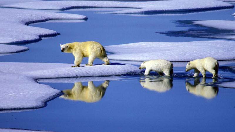 Der Klimawandel ist in vollem Gange. Trockenheiten nehmen zu, sintflutartige Regenfälle ebenfalls.