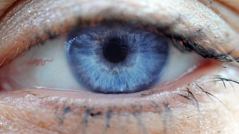 Augendiagnostik Krankheitssymptome Am Auge Ablesen
