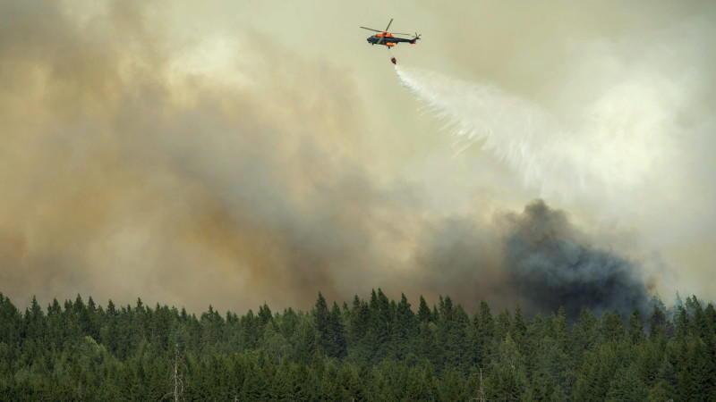 Mit speziellen Löschflugzeugen und dank des Regens konnte der verheerende Waldbrand in Schweden unter Kontrolle gebracht werden.
