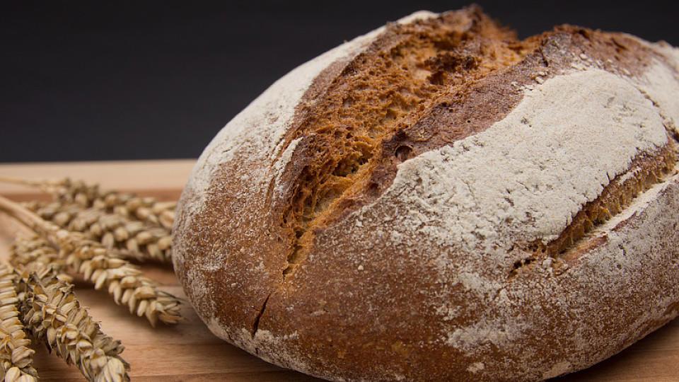 Brot vom Bäcker ist frisch und schmeckt lecker. Bekommt man beim Discounter auch ein gutes Brot?