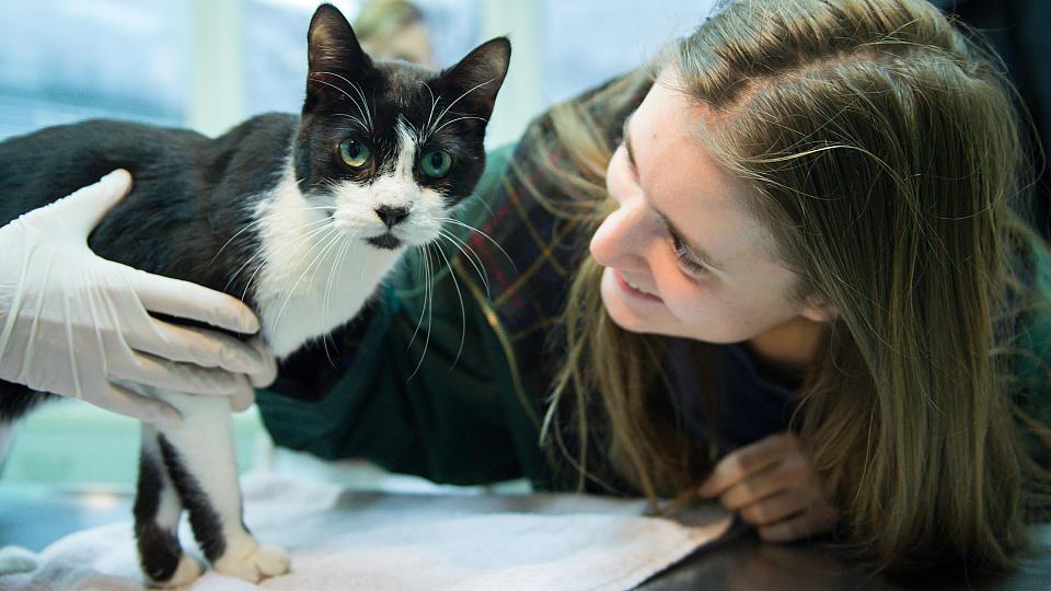 Elena Hanke mit ihrer Katze Miko bei einem Pressetermin im Tierheim in Berlin