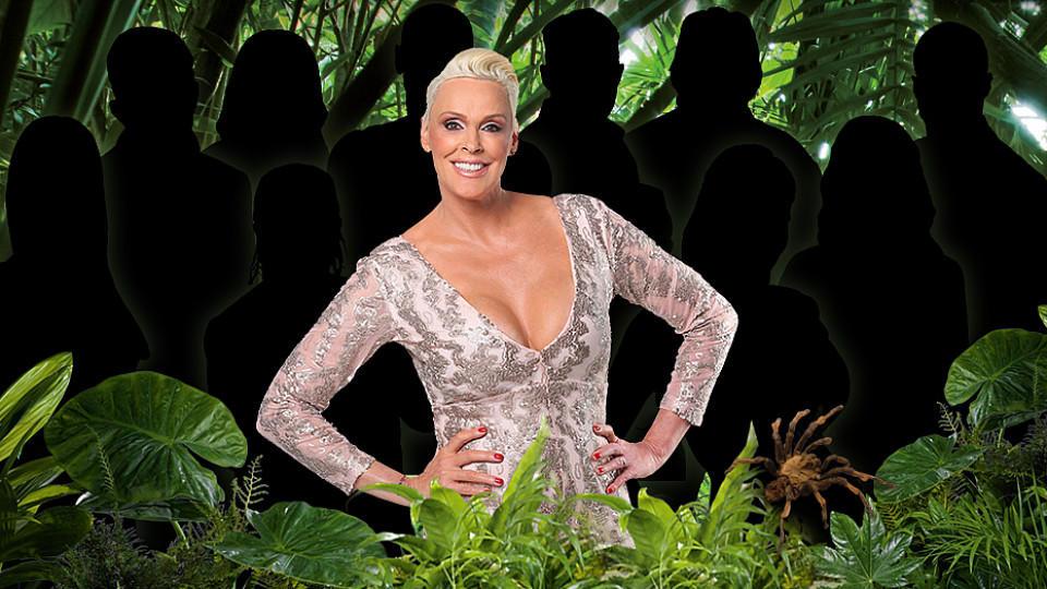 Ich bin ein Star - Holt mich hier raus: Bisher steht nur Hollywood-Star Brigitte Nielsen als Dschungelcamp-Kandidatin fest