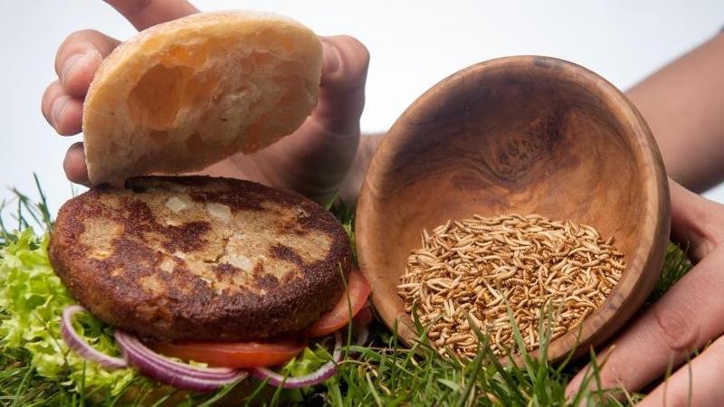 Insekten im Speiseplan - Nach Insekten-Burger sieht diese Kreation nicht aus.