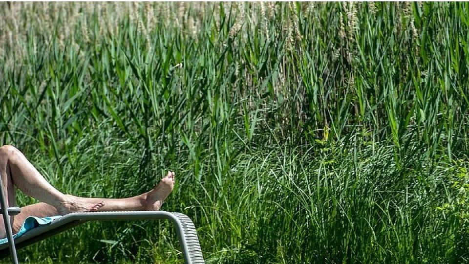 nackt im garten mann verliert sauna prozess und muss nachbarn aushalten. Black Bedroom Furniture Sets. Home Design Ideas