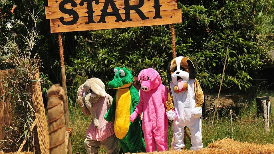 """In putzigen Tierkostümen müssen die Herren im """"Sommerhaus der Stars"""" das Parcours-Spiel antreten"""