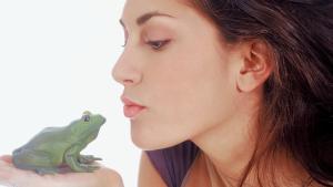 Ob Ihr Partner der Richtige? Forscher behaupten: Frau muss 22 Frösche küssen, bis sie ihren Mister Right trifft. Photo: Symbolbild.