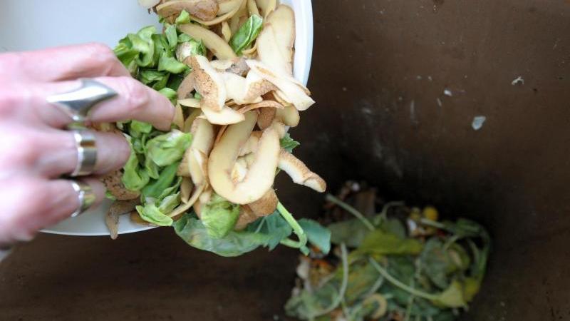Müll wird in eine Biotonne gekippt