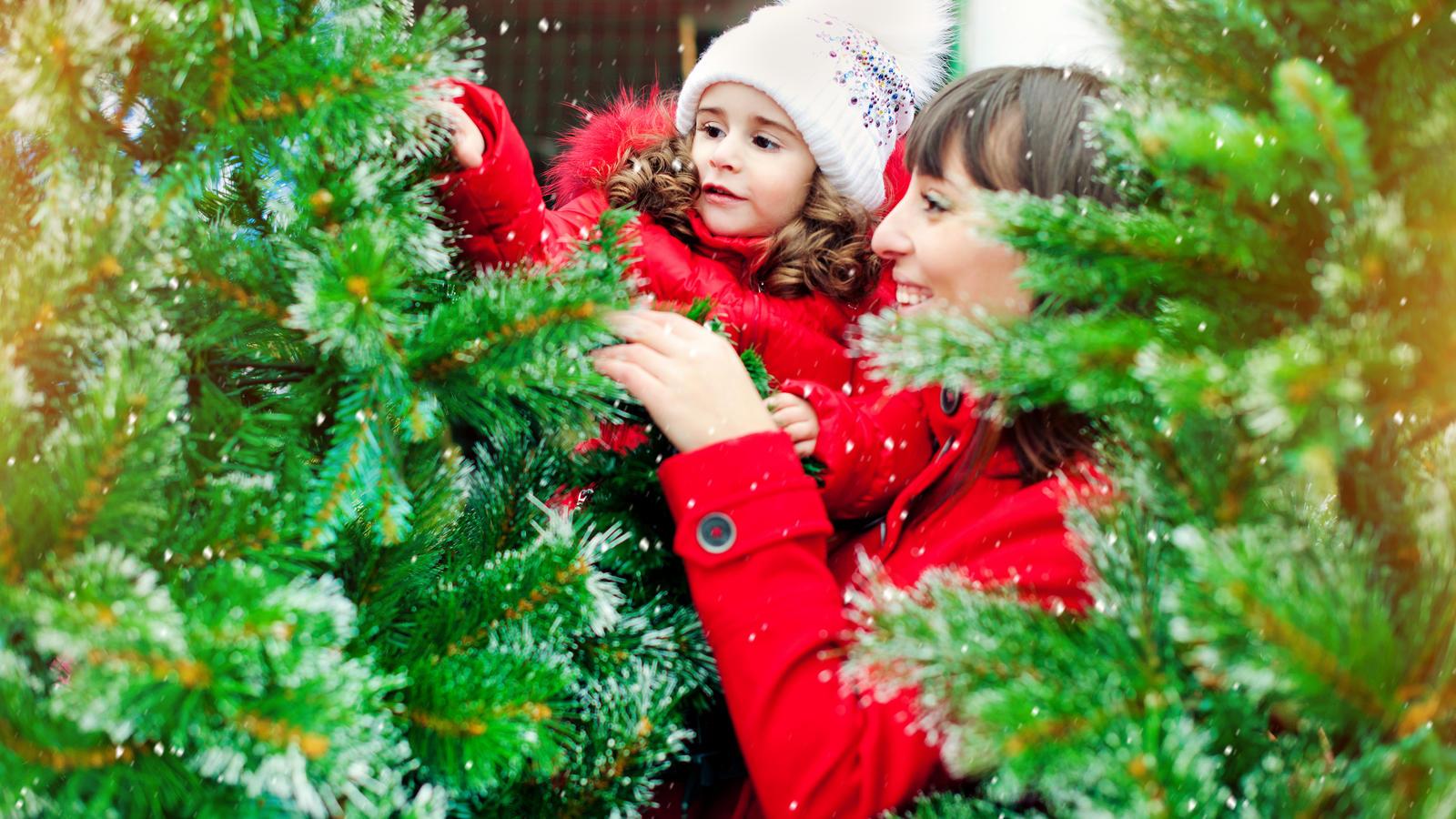 Ndr Weihnachtsbaum.Pestizide Am Weihnachtsbaum Gesundheitsgefahr Für Den Verbraucher