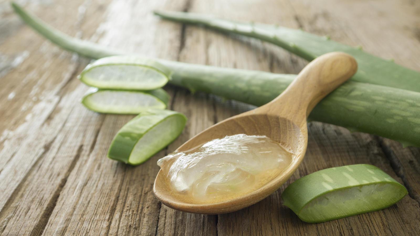 Die Gesundheits- und Kosmetik-Branche schwört auf Aloe vera.