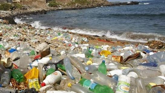 Einer Studie der Ellen-MacArthur-Stiftung zufolge landen jährlich mindestens acht Millionen Tonnen Plastik in den Ozeanen. Foto: Nic Bothma