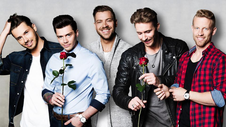 Auch sie hoffen auf die erste Rose von der Bachelorette: Arnold, Andre, Alex, David und Jens