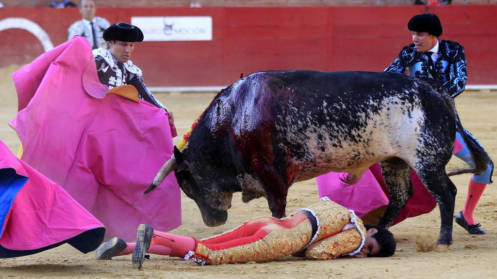 epaselect epa05417590 Spanish bullfighter Victor Barrio (bottom), 29, is gored during a bullfight held on the occasion of Feria del Angel in Teruel, Aragon (Spain), 09 July 2016. Barrio died due to the injures after being seriously gored by his third