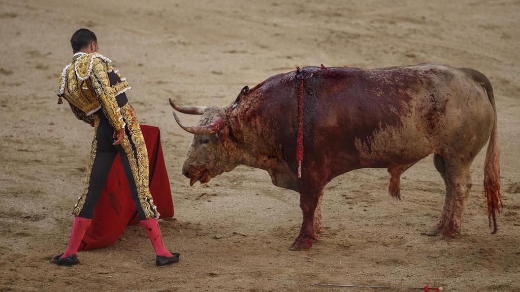 """ARCHIV - Der spanische Stierkämpfer (Matador) Alejandro Talavante kämpft am 24.05.2017 in Madrid, Spanien, in der Las Ventas Stierkampfarena gegen einen Bullen der Nunez del Cubillo Ranch. (zu dpa """"Stierkampf ohne Blut - Neues Balearen-Gesetz schützt"""