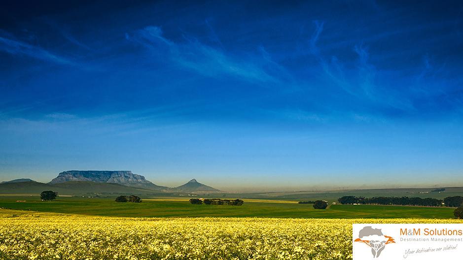 In nur zehn Stunden erreicht man Südafrika aus Deutschland.