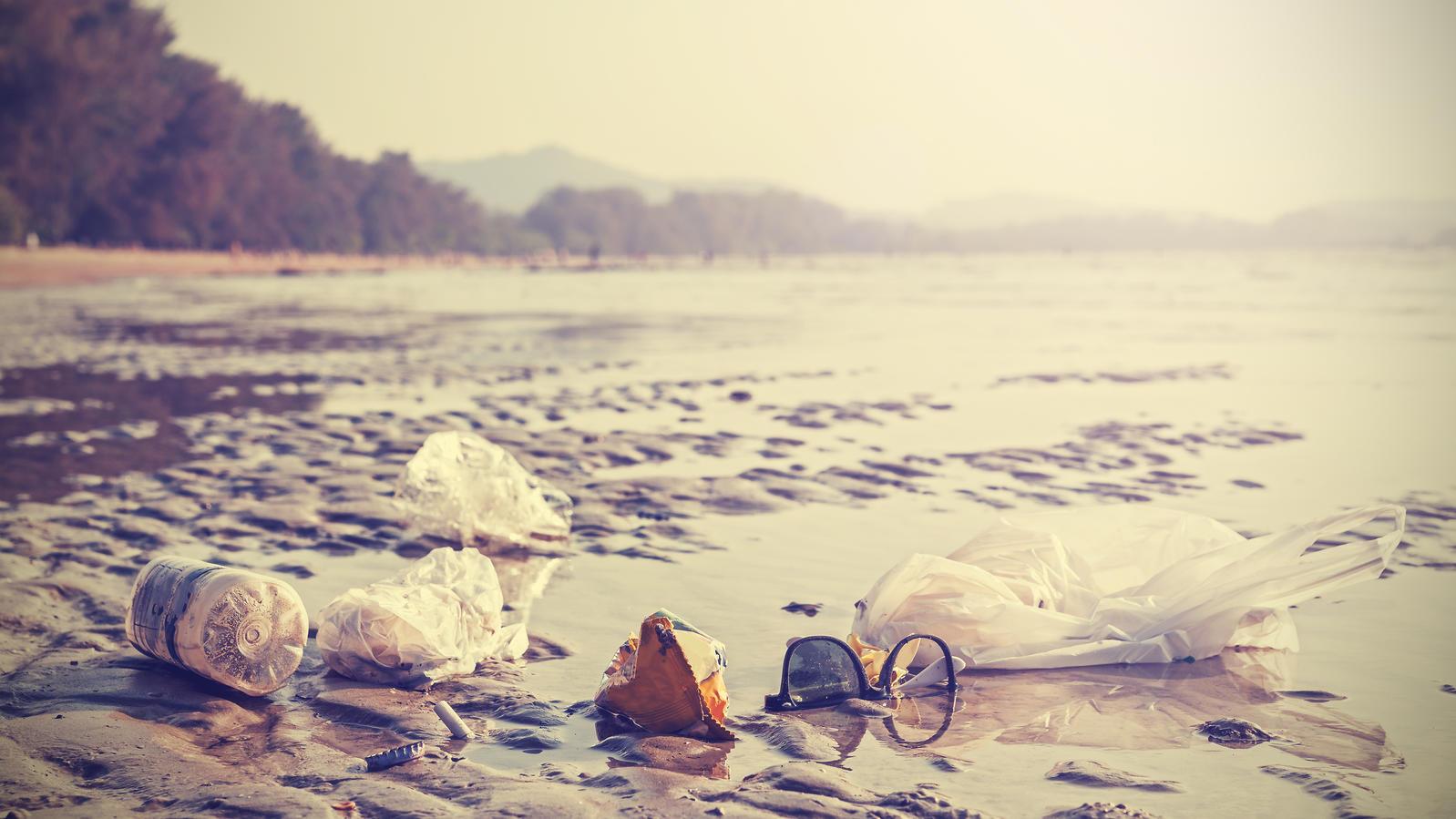 Die Verschmutzung der Meere durch Plastik ist enorm.