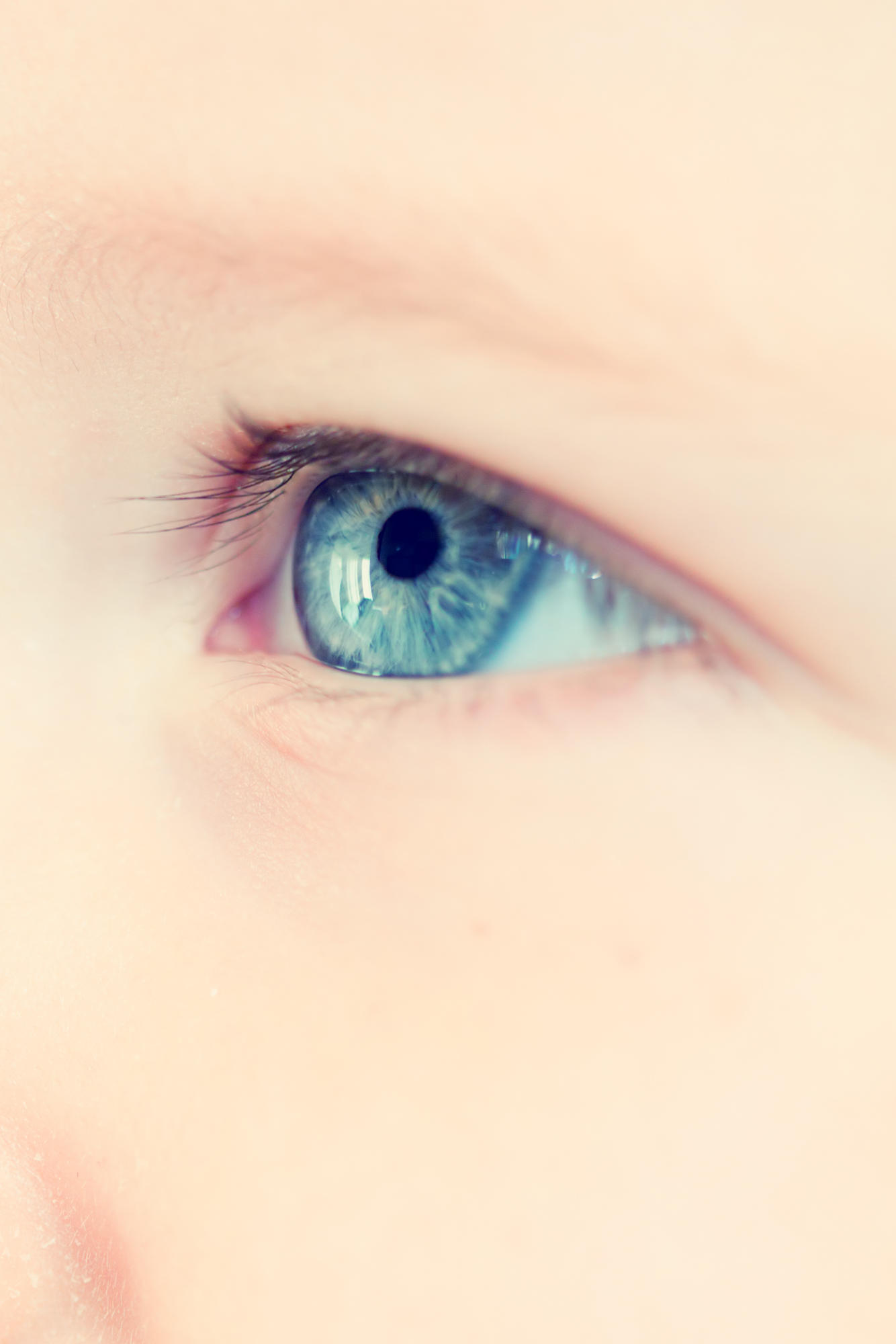 Augen eltern augen braune kind blaue Babys Augenfarbe: