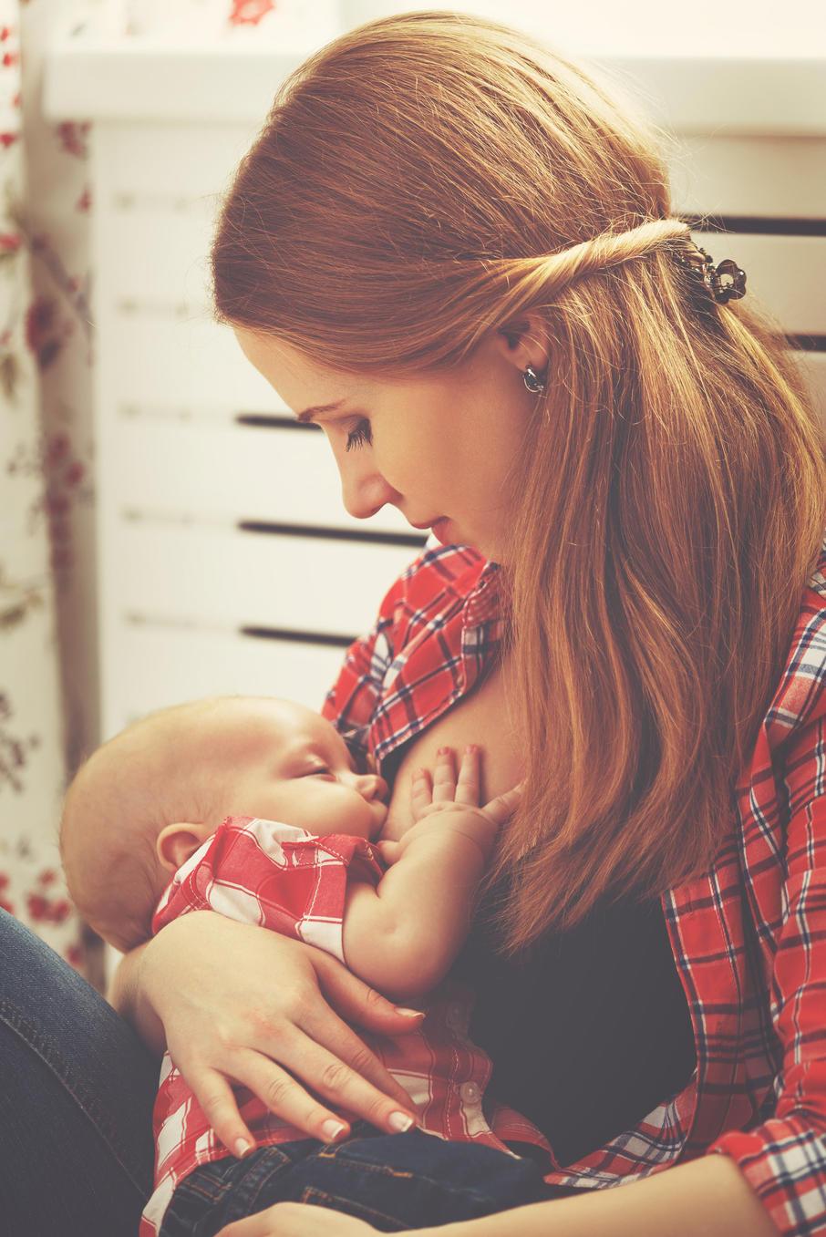 Schwangerschaft milchproduktion anregen ohne Milchbildung anregen: