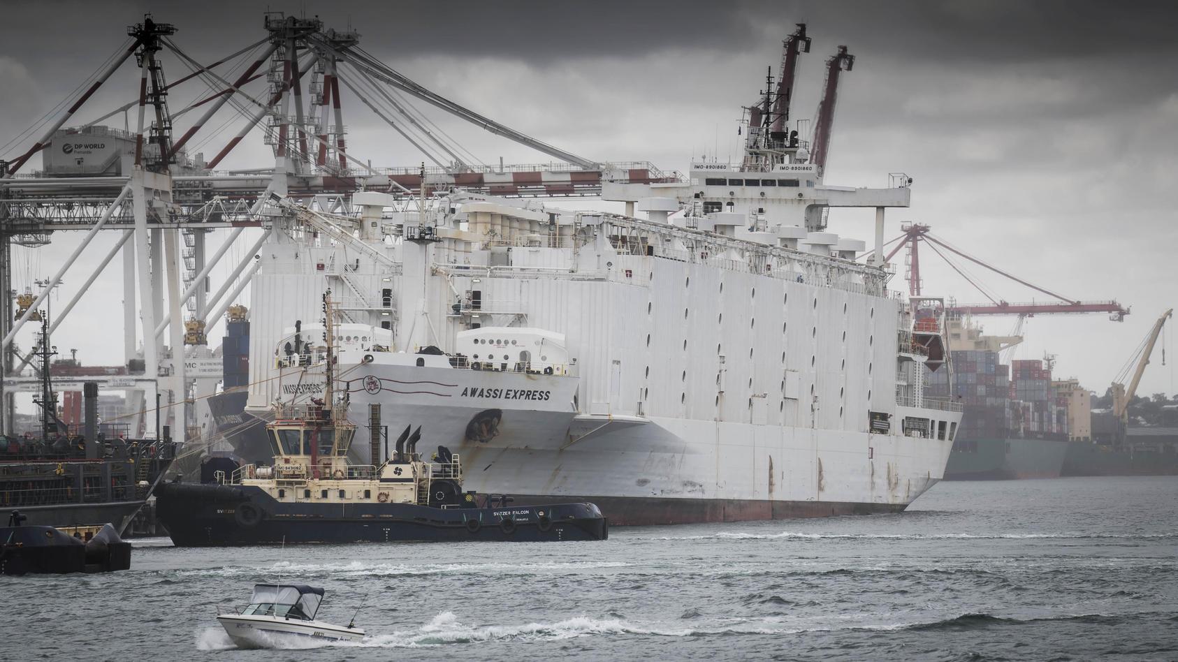 Der Frachter 'Awassi Express' im Hafen von Fremantle ist Gegenstand staatlicher Untersuchungen.
