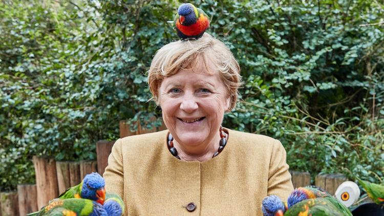"""Merkel auf Abschiedsbesuch - """"Ich wollte nochmal Arrivederci sagen"""""""