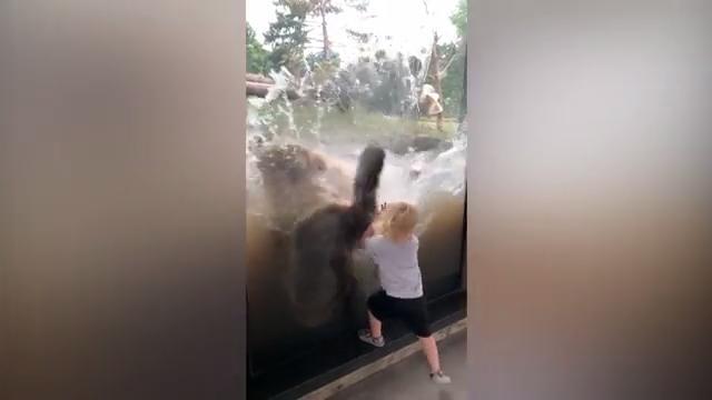 Großmutter Liebt Das Ficken In Freier Wildbahn
