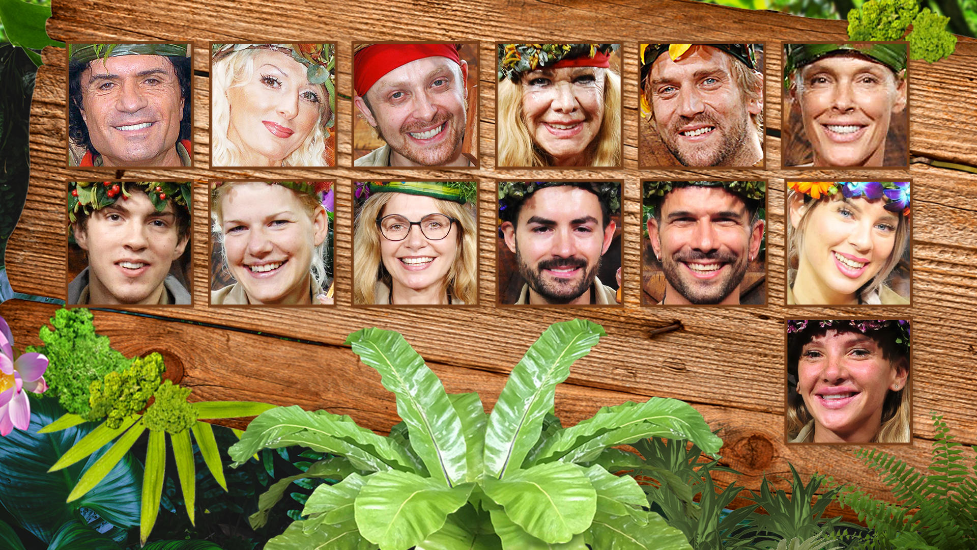 Das Sind Die 13 Dschungelkonige Und Koniginnen